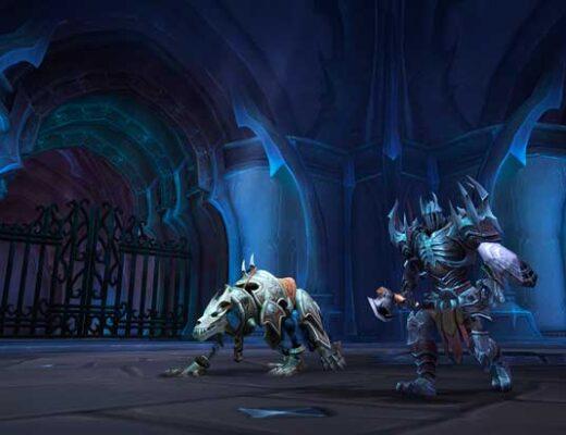 Обновление World of Warcraft 9.0.5